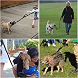 Bolux 3M Reflective Dog Leash 5ft Long with Traffic Padded Handle, Heavy Duty, Double Handle Lead for Greater Control Safety Training, Perfect for Large or Medium Dog, Dual Handles