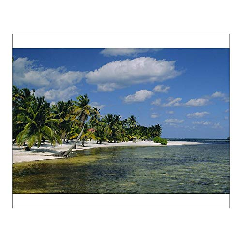 robertharding 10x8 Print of Main Dive site in Belize, Ambergris Caye, Belize, Central America (1132299)