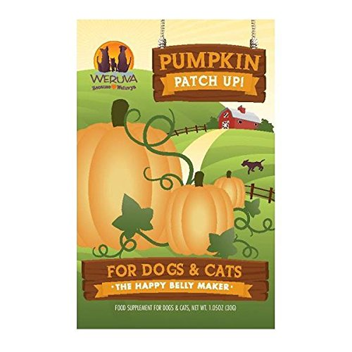Weruva Pumpkin Patch Up! Pumpkin Puree Digestive Supplement Pouches for Dogs & Cats
