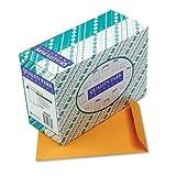 Redi-Seal Envelope, Plain, 28Lb, 10 quot;x13 quot;, 250/BX, Kraft