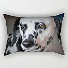 Pillow Shams Of Dogs For Birthday Festival Dinning Room Him Divan Boys 18 X 26 Inches / 45 By 65 Cm(two Sides)