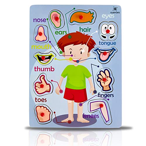 Gleeporte Wooden Peg Puzzle, My Body - Outside - Learning Educational Pegged Puzzle for Toddler & Kids (10 pcs)