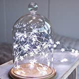 DWR Star String Lights, 3M LED Micro Fairy Lights Christmas Wedding decoration Lights Battery Operate Twinkle Lights (White) (White)