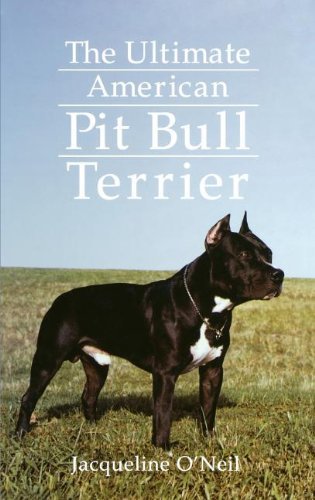 The Ultimate American Pit Bull Terrier