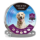 Dog Flea and Tick Collars Natural Flea Prevention Collar for Cats One Size Fits All Adjustable (A)
