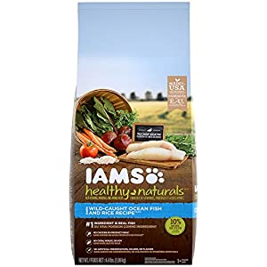 IAMS HEALTHY NATURALS Adult Ocean Fish and Rice Recipe Dry Dog Food 4.4 Pounds