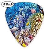 Guitar Picks - Abstract Art Colorful Designs,Egyptian Red Sea Bottom View With Marine Creatures Top Of Tribal Ocean Scuba Image,Unique Guitar Gift,For Bass Electric & Acoustic Guitars-12 Pack