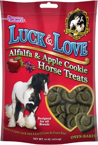 Apple Cookie Horse Treats - 4