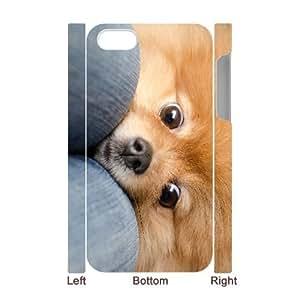 3D Bumper Plastic Case Of Pomeranian customized case For Iphone 4/4s