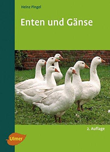 Enten und Gänse -