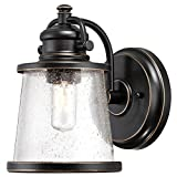 Westinghouse 6204000 Emma Jane One-Light Outdoor