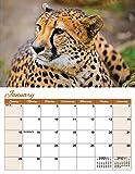 2017 Into The Wild Deluxe Wall Calendar