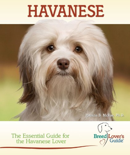 Havanese (Breed Lover's Guide)
