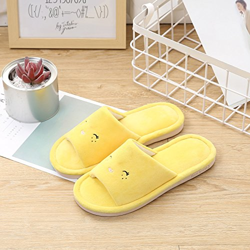 Fankou soggiorno confortevole e rilassante piano anti-raffreddare gli amanti della moda caldo pantofole ,44-45, giallo Smiley face bird