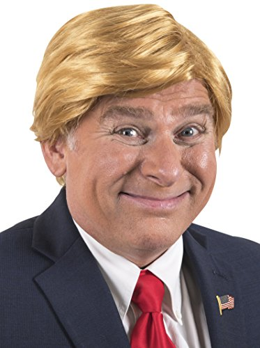 Mr. President Billionaire Halloween Costume Wig, Adjustable