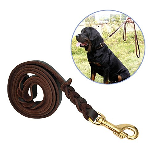 Dog Leash,Focuspet 6 ft Pet braided leather dog leash Large Medium Heavy Duty Dogs Leash Leads Rope Walking&Training 1/2 Inch Brown Large Metal Clasp snap (Braided Leather Leads)