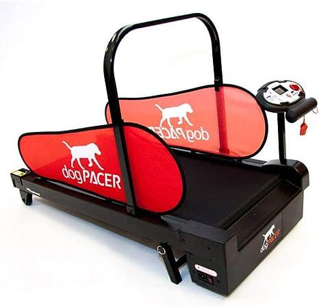 dogPACER Minipacer Cinta de correr: Amazon.es: Productos para mascotas