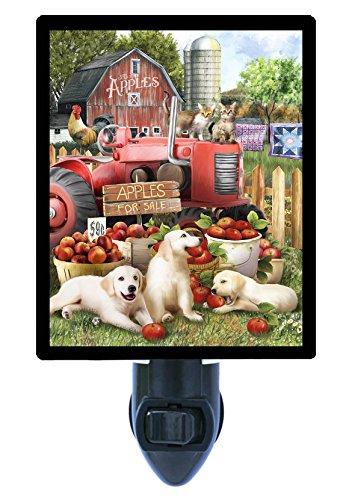 Night Light, Official Taste Testers, Dogs, Farm, Apples, Autumn, Fall, Barn LED Night Light