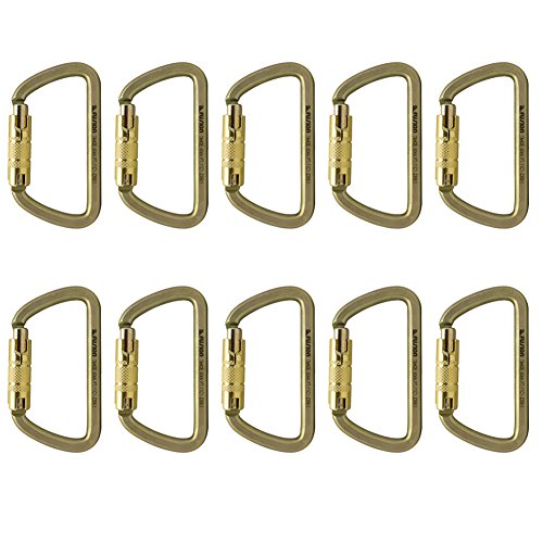 Fusion Climb Tahoe Steel Screw Lock Key Nose D Carabiner 10-Pack by Fusion Climb