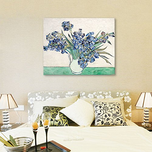 Faraway 5D Full Diamond Painting Van Gogh Series Iris Living Room for Wall Decor 16X20inch