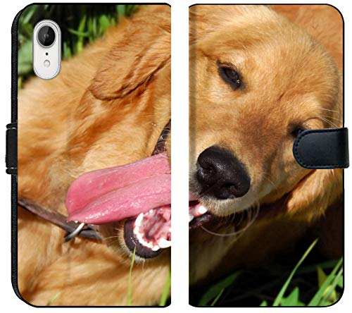 Luxlady iPhone XR Flip Fabric Wallet Case Happy Golden Retriever Dog with Opened Mouth Portrait Outdoor Image ID 7103076