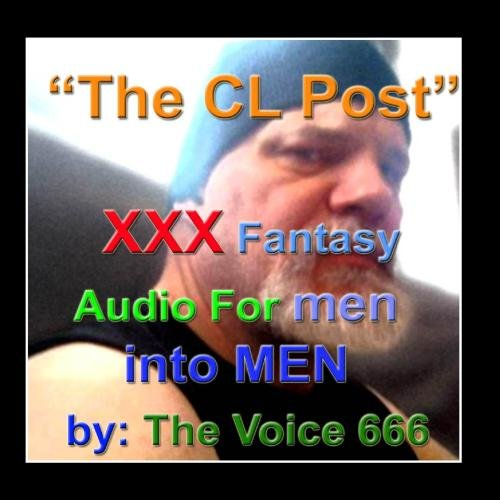 stories-for-perverts-the-craigslist-post-single