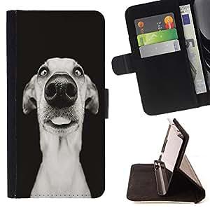 Devil Case- Estilo PU billetera de cuero del soporte del tir¨®n [solapa de cierre] Cubierta FOR Samsung Galaxy G360 G3608 G3606- Funny Dog Puppy Pet
