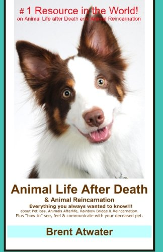 Animal Life After Death & Animal Reincarnation: Pet Loss Answers for all your heart's Questions! by CreateSpace Independent Publishing Platform (Image #1)