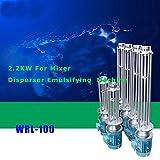 Mode WRL-100 2.2KW For Mixer Disperser Emulsifying Machine New 220V(ITEM#181648)