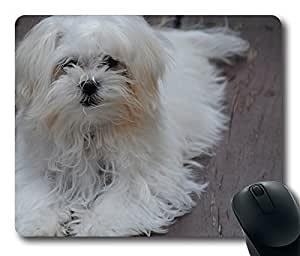 Maltese Puppy Cool Comfortable Gaming Mouse Pad