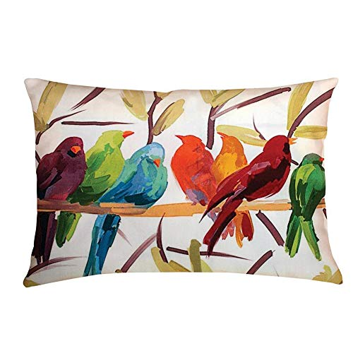 Aremazing Super Soft Rectangle Abstract Colored Bird Pattern Home Decorative Pillowcase Throw Pillow Cushion Cover (C)