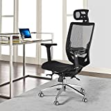 Yaheetech High Back Mesh Office Chair Ergonomic Computer Desk Chair -Seat Height/Headrest/Armrest/Angle of Backrest Adjustbale with Tilt Tension Control Knob