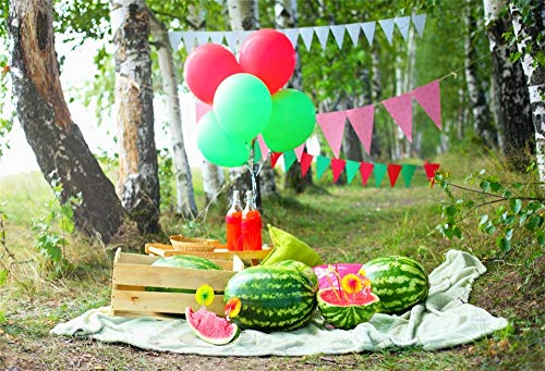 AOFOTO 5x3ft Outdoors Travel Picnic Scene Backdrop Summer Watermelons Juice Forest Camping Holiday Celebration Photography Studio Background Birthday Party Decoration Banner Video Drape Photos Prop