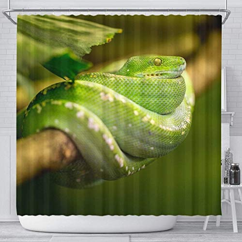 Paws With Attitude Green Snake Print Shower Curtains ()