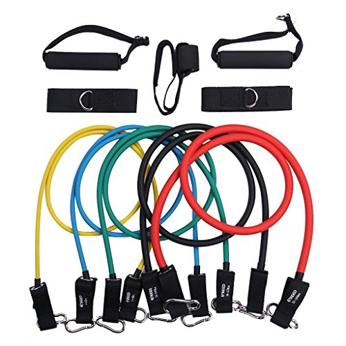 Enkeeo Resistance Band Set Exercise Bands Resistance Tube with Door Anchor, Handel, Ankle Strap, Exercise Chart, Resistance Band and Carry Bag for Legs Workout (5 Bands Included)
