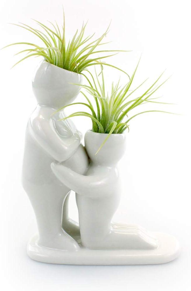 Toucan Planter  Ceramic Animal Planter  Ceramic Toucan Air Plant Holder