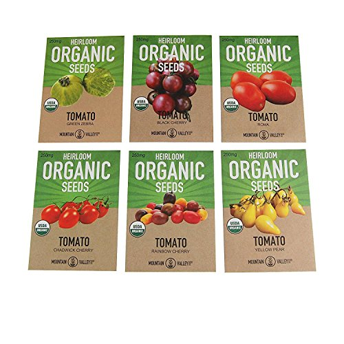 Tomato Seed Pack (Organic Heirloom Cherry Tomato Garden Seeds – 6 Non-GMO Varieties: Yellow Pear, Chadwick Cherry, Black Cherry, Rainbow Cherry, Roma & Green Zebra)