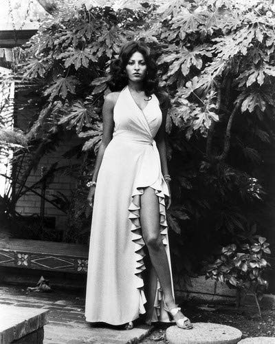 Pam Grier in Foxy Brown sexy leggy pin up stunning dress 16x20 Poster