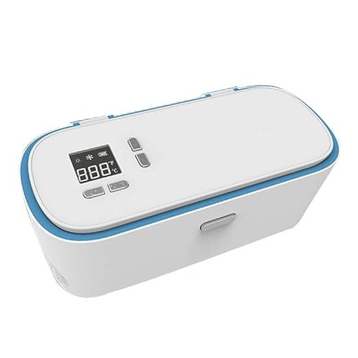Mini Nevera PortáTil Coche Refrigerador Insulina Refrigerador Caja ...