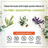 Puriya Tea Tree Oil Balm, Extra Strength Plant Rich