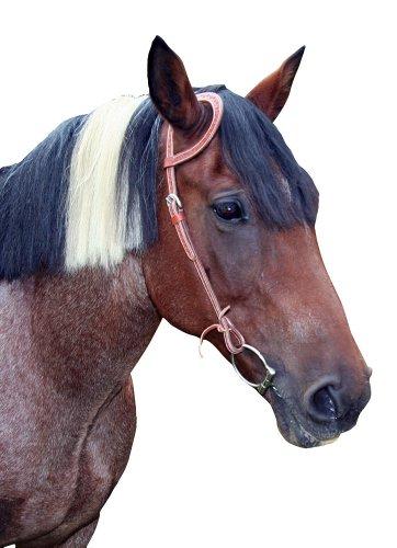 Kerbl 32983 Einohrtrense braun Dakota, Pony
