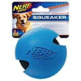 Nerf Dog Rubber Protected Tennis Ball, Blue/Orange