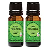 Edens Garden Focus, Focus, Focus Essential Oil Synergy Blend, 100% Pure Therapeutic Grade (Highest Quality Aromatherapy Oils), 10 ml Value Pack