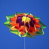 Lotus Single Line Box Kite