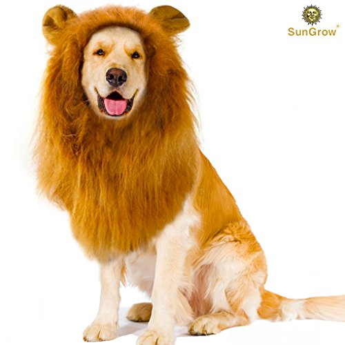 SunGrow Lion Mane Wig with Ears - Photo Prop, Fancy Costume for Large Dogs & Cats - Perfect Lion Hat for Halloween & Cosplay Parties - Realistic, Funny, Cute Headgear - Adorable Gift for Pet Lovers