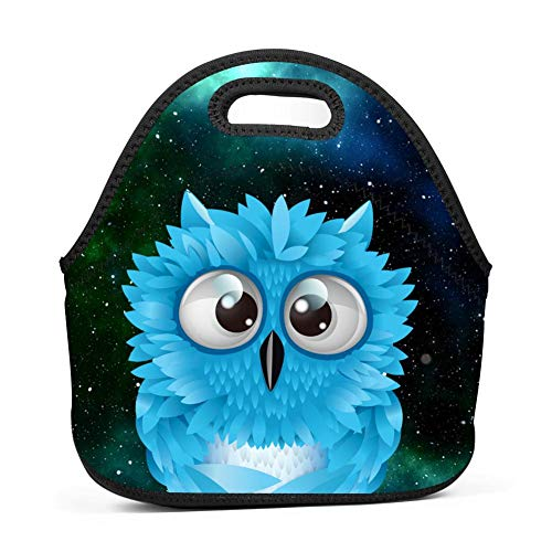 Adorable Owl Bento Boxes Washable Lunch Tote Bags