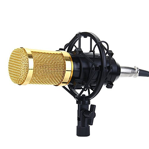 Price comparison product image Recording Microphone Professional Condenser Mic with Shock Mount and Anti-wind Foam Cap for Ham Radio Podcasting Presentation (Black)