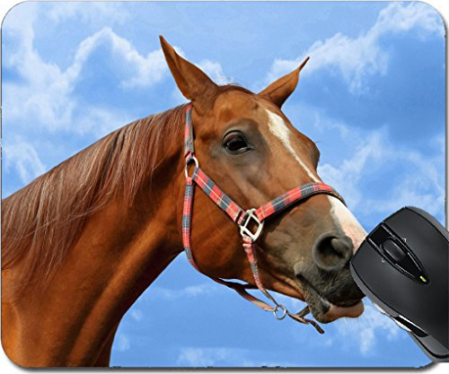 MSD Mousepad Mouse Pads/Mat design 27313125 Young beautiful red mare against blue sky