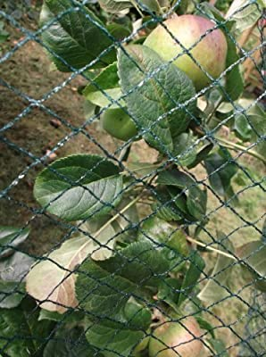 Green Woven Garden Bird Netting: 10m x 4m*