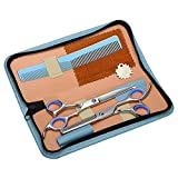 ASIV Hairdressing Scissors Set, Professional Salon Barber Edge Haircut Shears Tool Kits